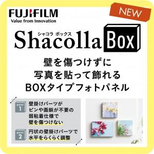 shacollabox_swing_A
